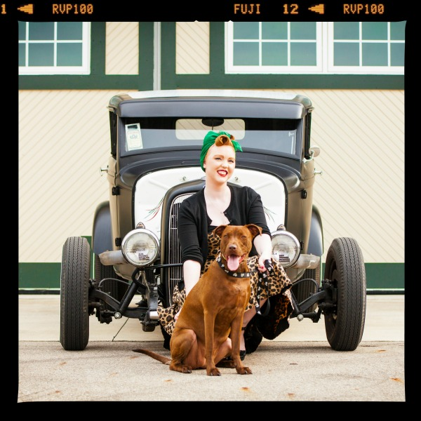 pit bull in front of an antique truck
